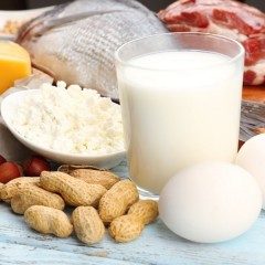 How important is Protein?