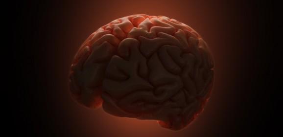 Brain Cell Death